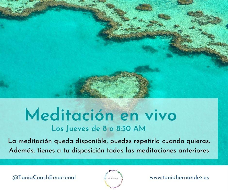 Reflexionamos y Meditamos Tania Hernández Coach Emocional